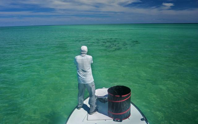 Ami outfitters fly fishing for Anna maria island fishing